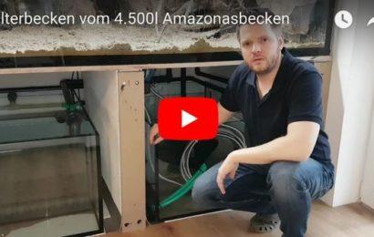 4.500-Liter-Becken – Filtertechnik