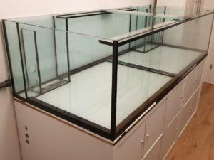 Aquarium 150cm